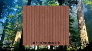 25 x 145 mm Bangkirai Terrassendiele