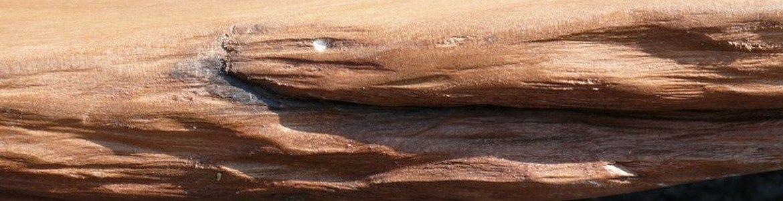 Kauri Holz