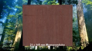 21 x 145 mm Massaranduba Terrassendiele