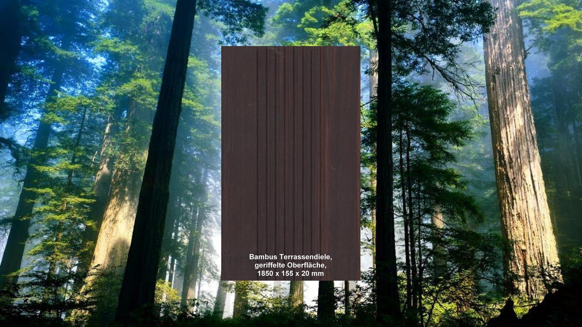 Bambus Terrassen len hk furniere Hötger & Koch GmbH