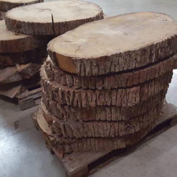 Eichen Baumscheiben