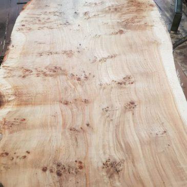 Grained poplar maser planks
